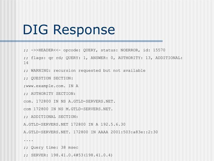DIG Response
