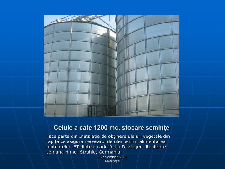 Celule a cate 1200 mc, stocare seminţe
