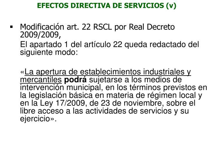 EFECTOS DIRECTIVA DE SERVICIOS (v)