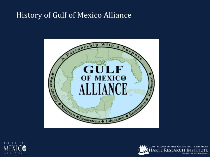 History of Gulf of Mexico Alliance