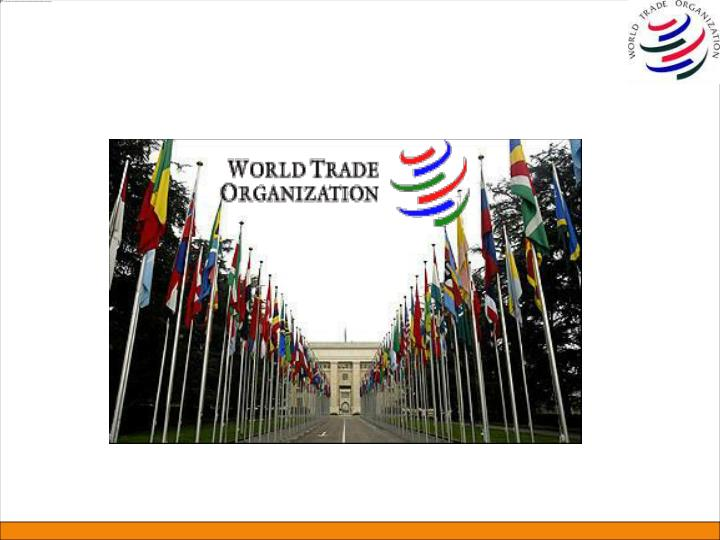 Brief snapshot on wto