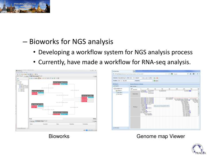 Bioworks for NGS analysis