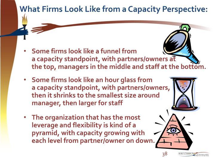 What Firms Look Like from a Capacity Perspective: