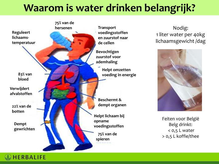 Waarom is water drinken belangrijk?