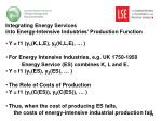 integrating energy services into energy intensive industries production function