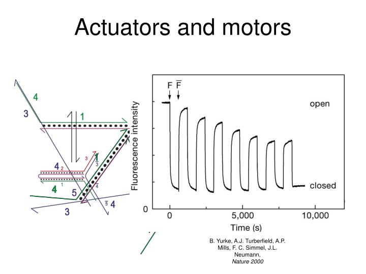 Actuators and motors