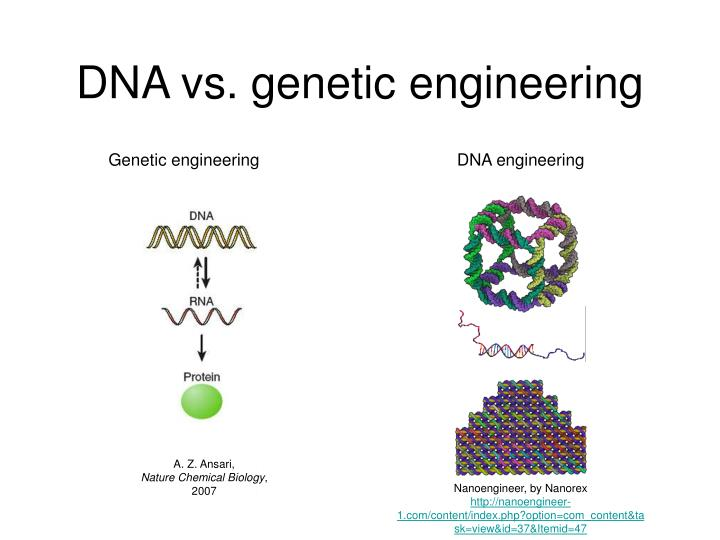 Dna vs genetic engineering