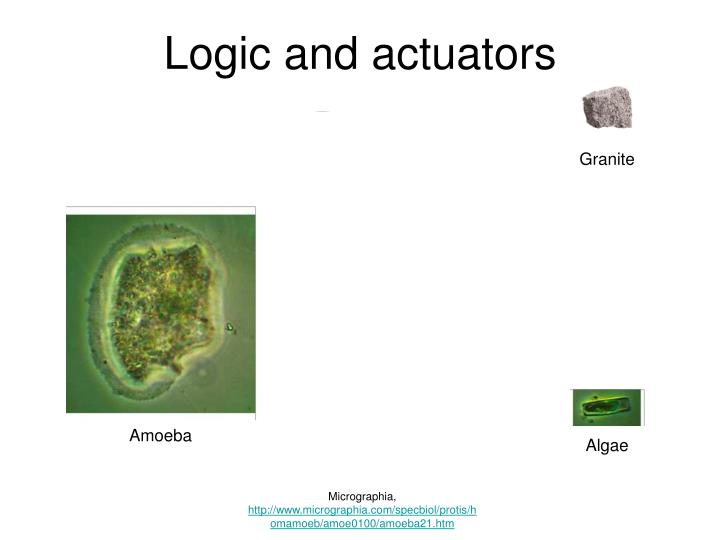 Logic and actuators