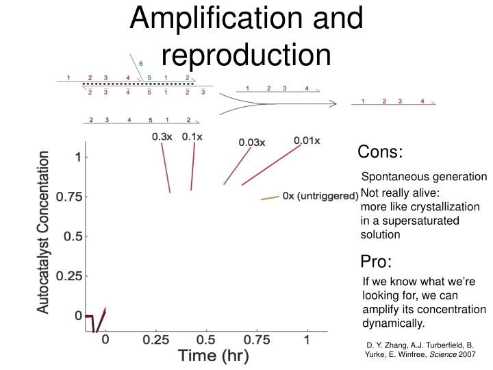 Amplification and reproduction