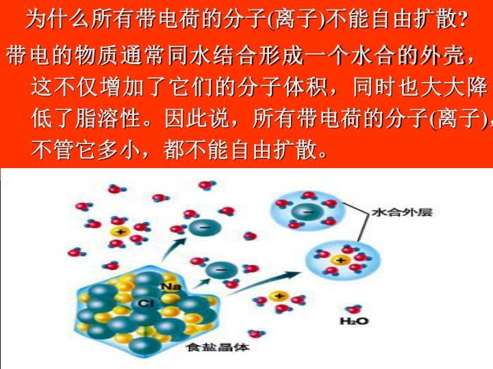为什么所有带电荷的分子(离子)不能自由扩散?