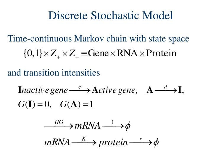 Discrete Stochastic Model