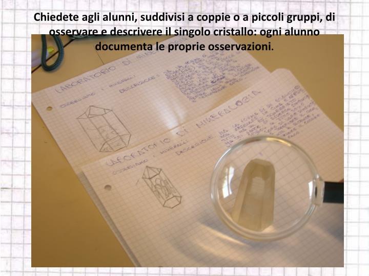 Chiedete agli alunni, suddivisi a coppie o a piccoli gruppi, di osservare e descrivere il singolo cristallo: ogni alunno documenta le proprie osservazioni