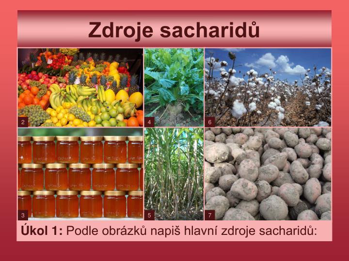 Zdroje sacharidů