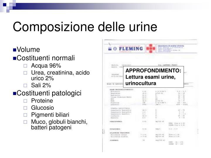 Composizione delle urine