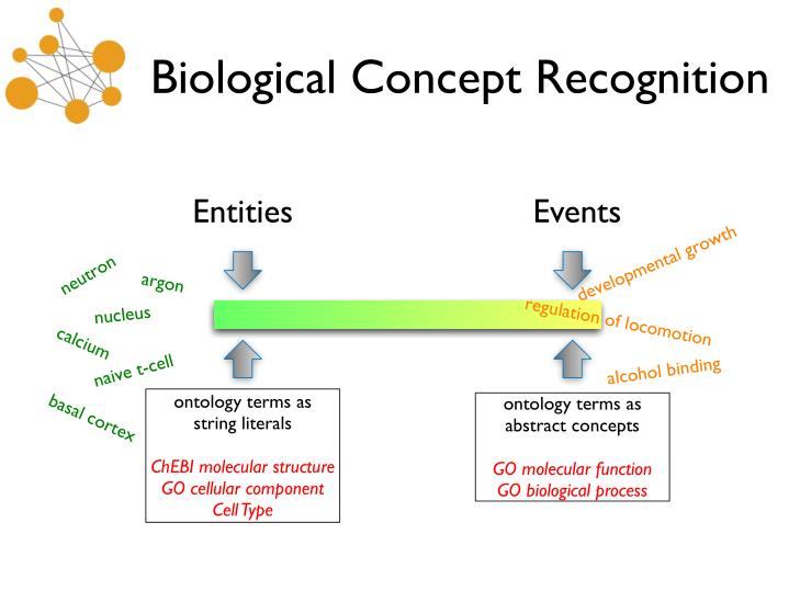 Biological Concept Recognition