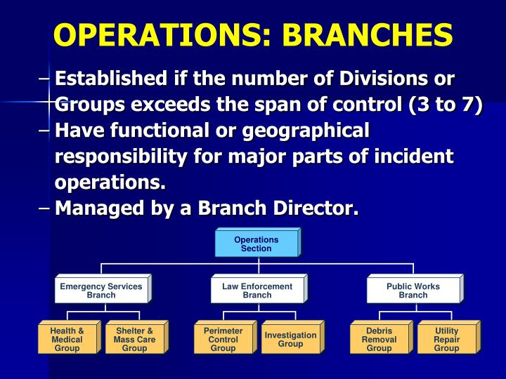OPERATIONS: BRANCHES