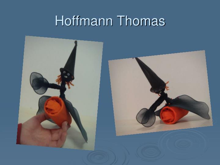 Hoffmann Thomas