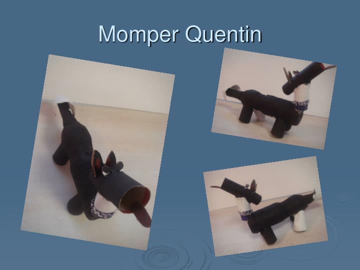 Momper Quentin