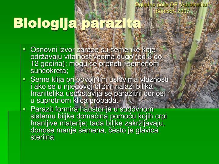 "Ogledno polje DP ""Agroinstitut"" Sombor, 2007"