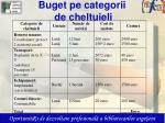buget pe categorii de cheltuieli