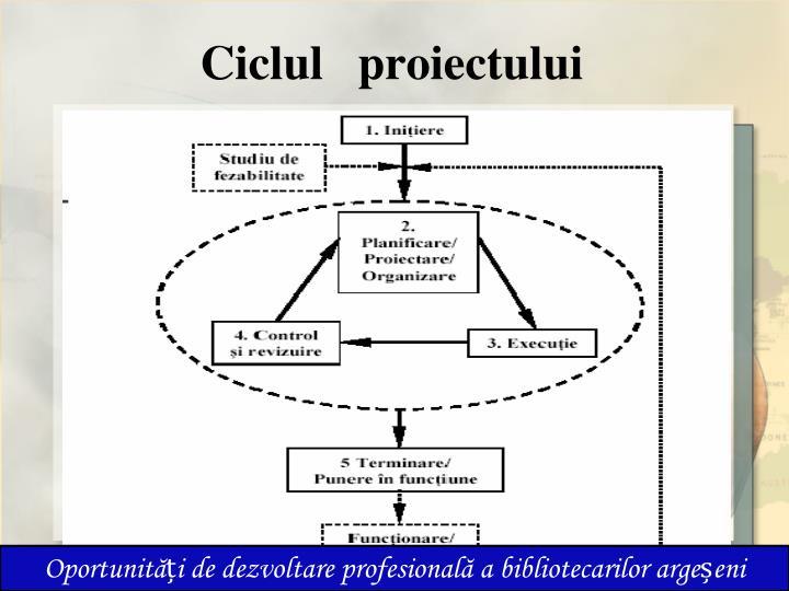 Ciclul