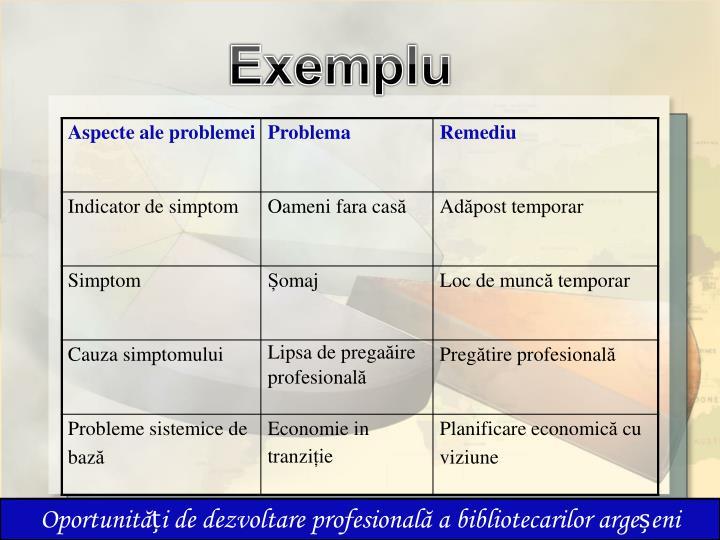 Exemplu