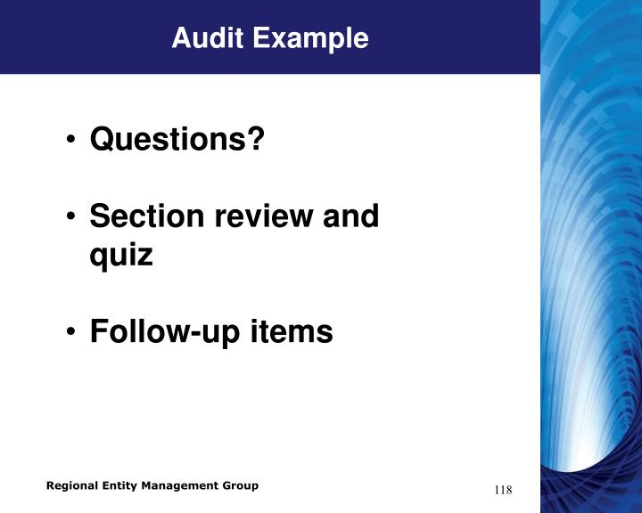 Audit Example