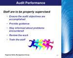 audit performance1