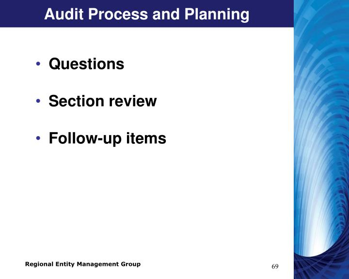 Audit Process and Planning