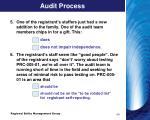 audit process2