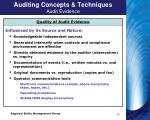 auditing concepts techniques audit evidence
