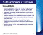 auditing concepts techniques