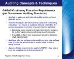 auditing concepts techniques2