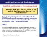 auditing concepts techniques4