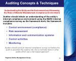 auditing concepts techniques7
