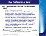 due professional care