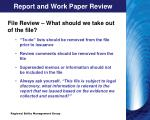 report and work paper review2