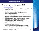 staffing the audit2