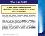 what is an audit