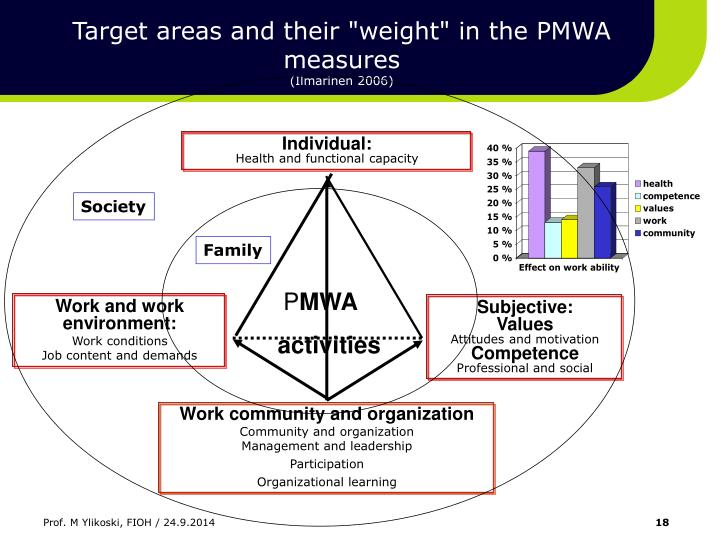 """Target areas and their """"weight"""" in the PMWA measures"""