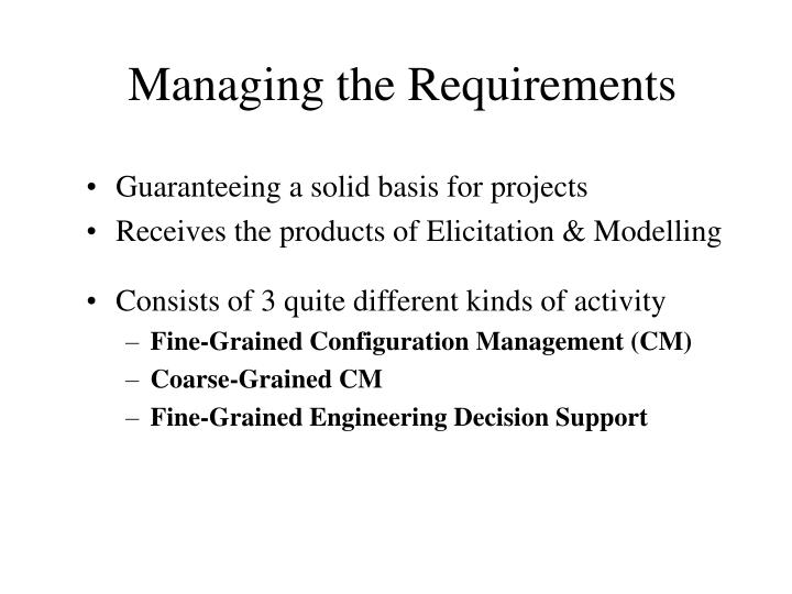 Managing the Requirements