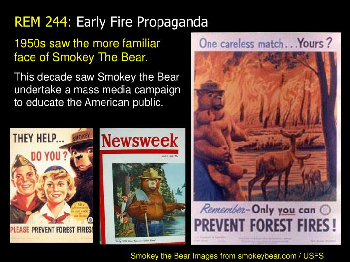 1950s saw the more familiar face of Smokey The Bear.