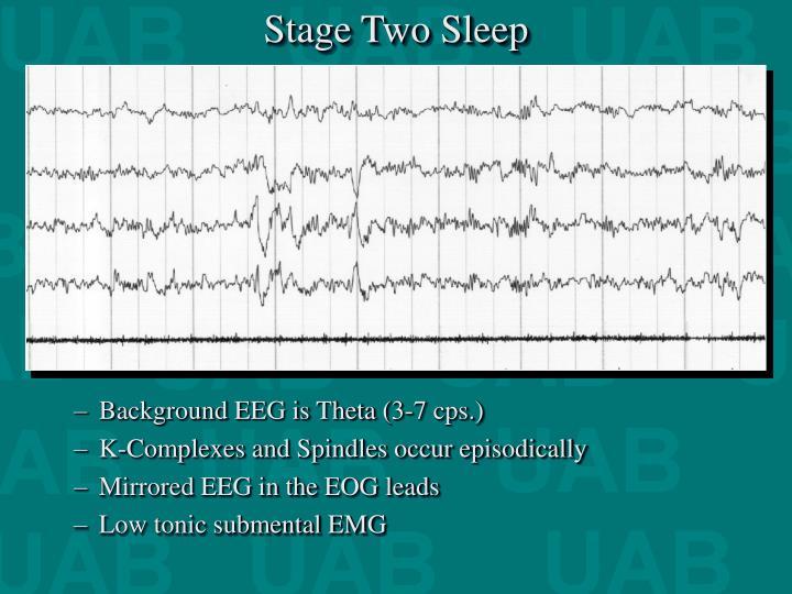 Stage Two Sleep