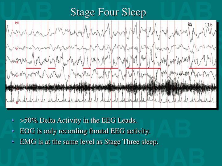 Stage Four Sleep