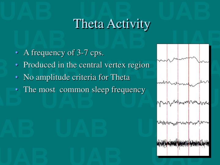Theta Activity