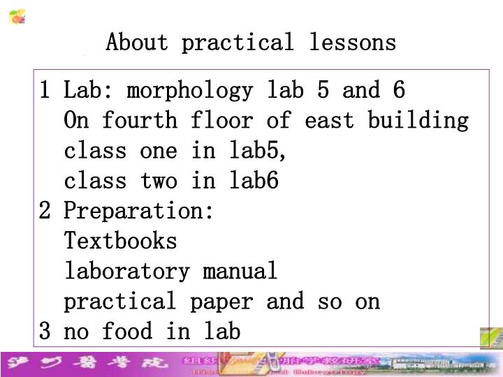 About practical lessons