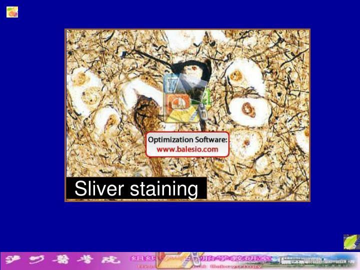 Sliver staining
