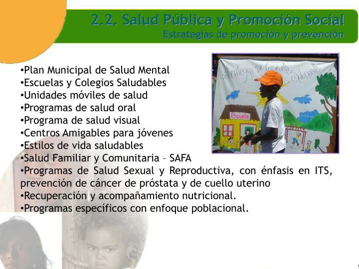 2.2. Salud Pública y Promoción Social