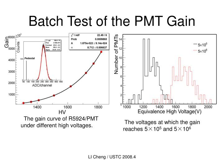 Batch Test of the PMT Gain