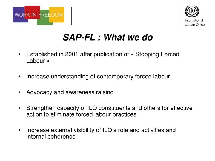 SAP-FL : What we do